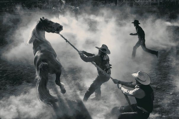 Фотоконкурс Smithsonian magazine - №17