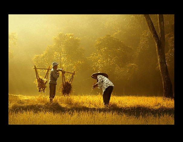 Урок Фотошопа. Художественная обработка фотографии в стиле Rarindra Prakarsa - №2