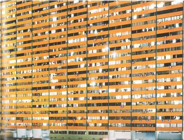 Автор фото сета «Неоновые тигры» - Петер Бялобжеский - №7