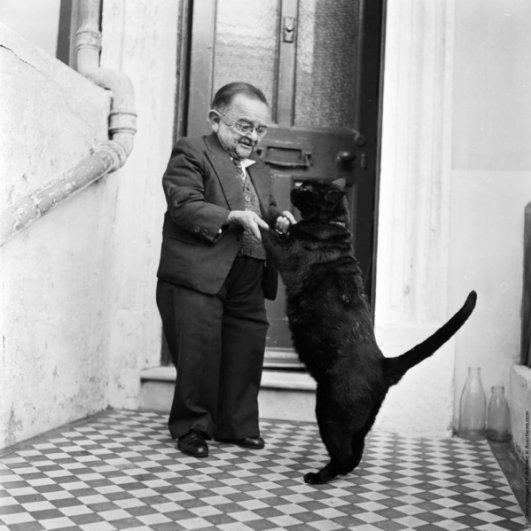 """""""Ретро"""" фото котов. Как это делали раньше - №13"""