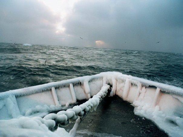 Морские приключения фотографа Кори Арнольда - №4