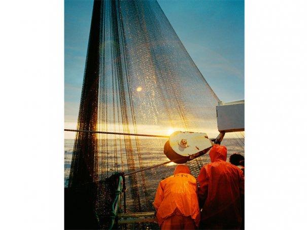 морское приключение фото