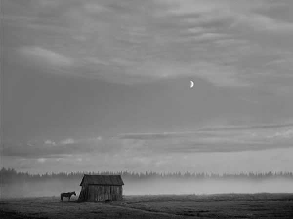 Фотограф Pentti Sammallahti - №13