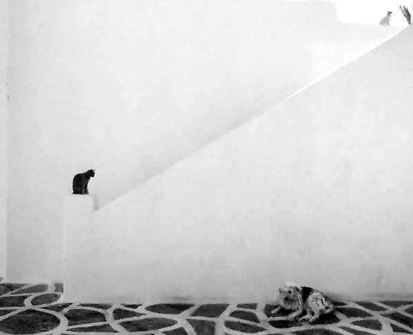 Фотограф Pentti Sammallahti - №17