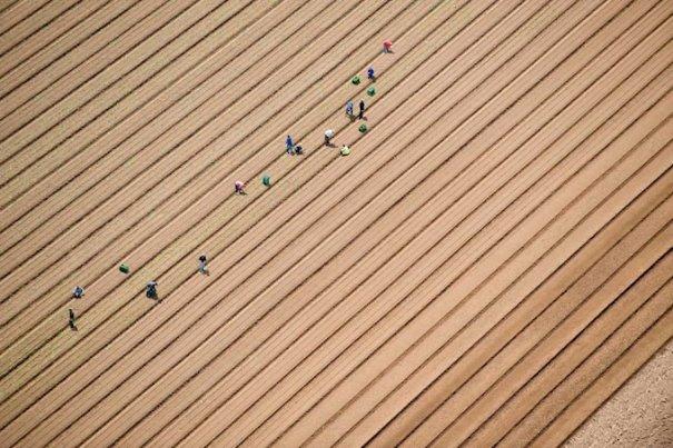 Аэрофотография Джейсон Хоукс/Jason Hawkes - №16