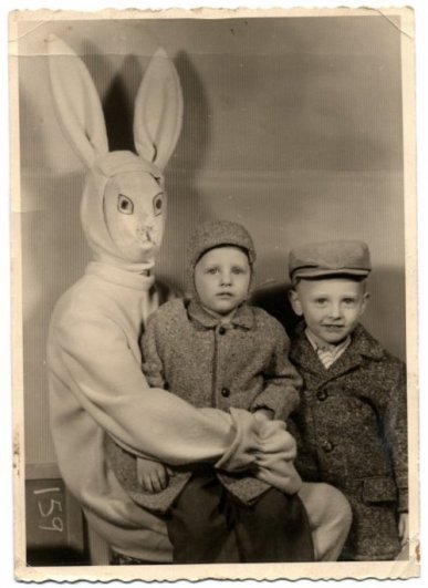 Фото юмор. Самые ужасные и смешные пасхальные кролики - №3