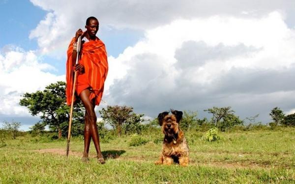 Интересная фото история о псе, который увидел весь мир - №4