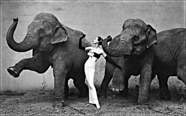 Легенда фото искусства. Мастер Ричард Аведон - №5
