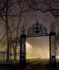 Уроки фотографии: съемка в тумане - №11