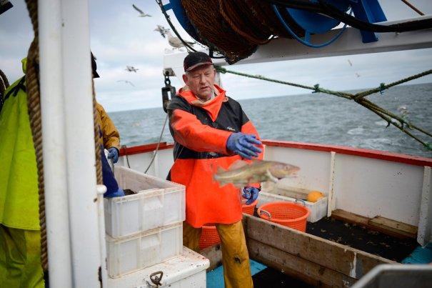 Рыбаки Англии - №8