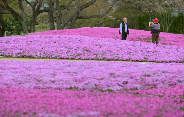 Kazuhiro Nogi / AFP /Getty Images
