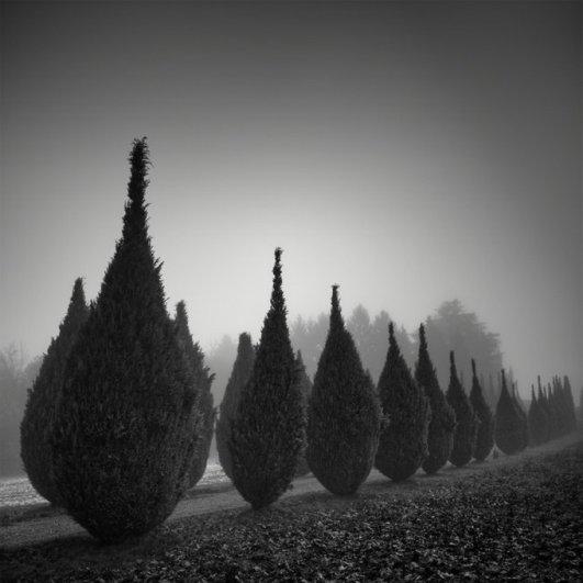 Швейцарский фотограф Пьер Пеллегрини/Pierre Pellegrini - №5