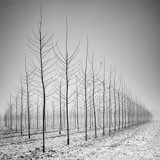 Швейцарский фотограф Пьер Пеллегрини/Pierre Pellegrini - №11
