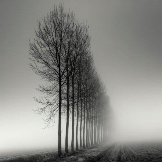 Швейцарский фотограф Пьер Пеллегрини/Pierre Pellegrini - №13