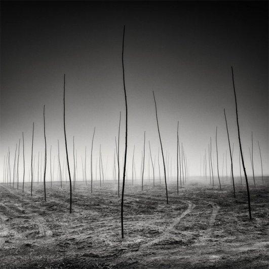 Швейцарский фотограф Пьер Пеллегрини/Pierre Pellegrini - №14