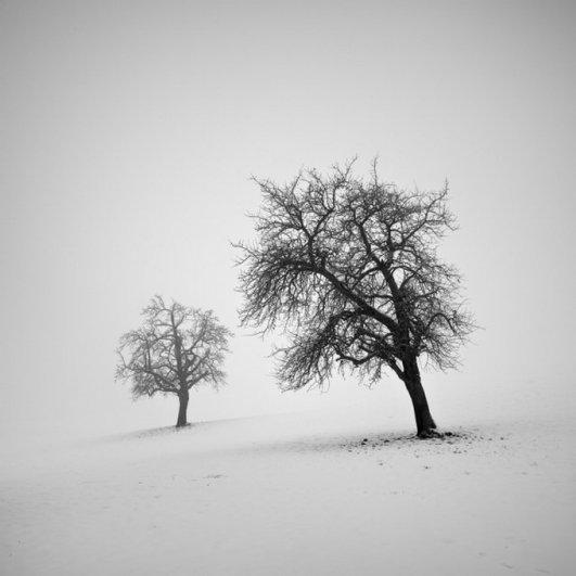 Швейцарский фотограф Пьер Пеллегрини/Pierre Pellegrini - №15