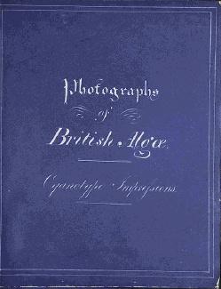 фото обложки книг