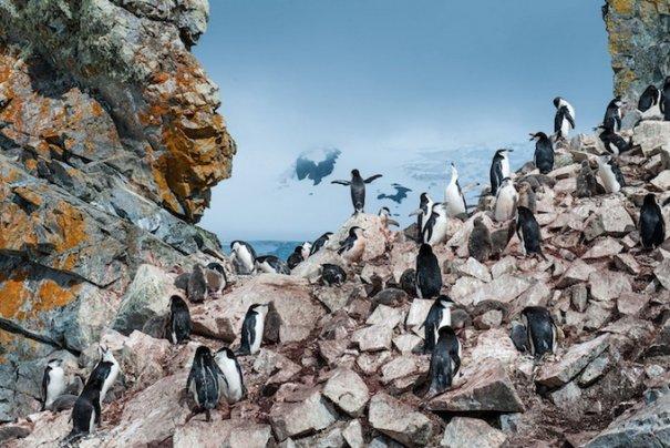 Фотоконкурс National Geographic Traveler 2013 - №12