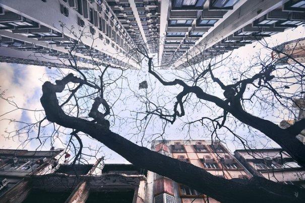 Небо Гонконга - №11