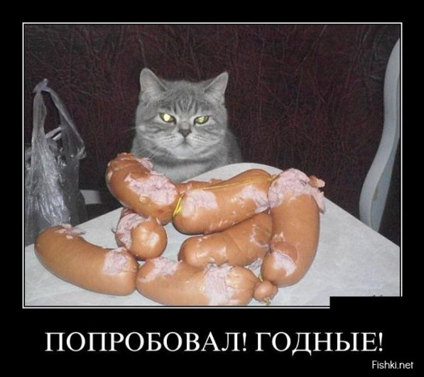 Немного фото юмора! Подборка забавных демотиваторов - №9