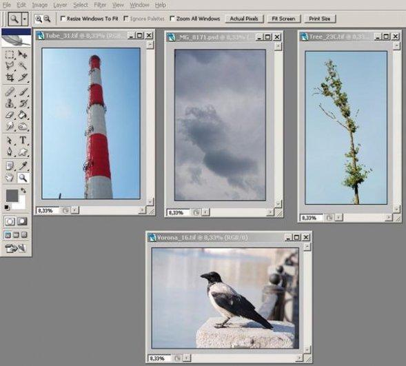 Обработка фото фильтром distort в программе Фотошоп - №2