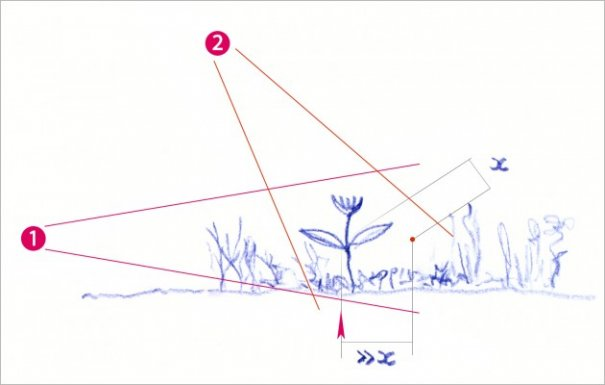 Выбор техники и подробное описание съемки макро фото на природе - №18