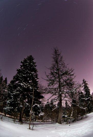 Снимок сделан с 15-минутной выдержкой. На нем хорошо видна Полярная звезда в центре вращения