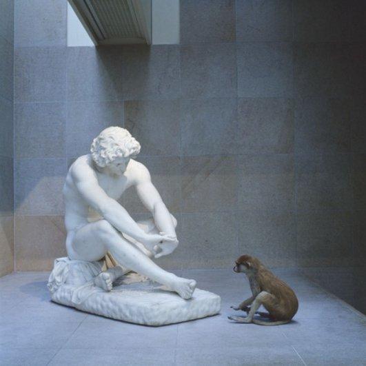 Разные примеры одного мастера - она любит и животных, и портреты - №16
