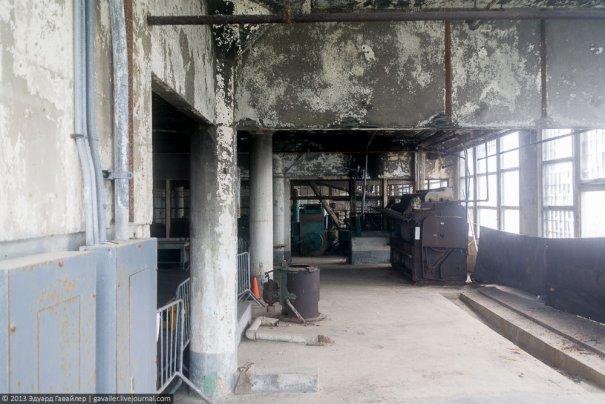 Необычная экскурсия - в легендарную тюрьму Алькатрас! - №22