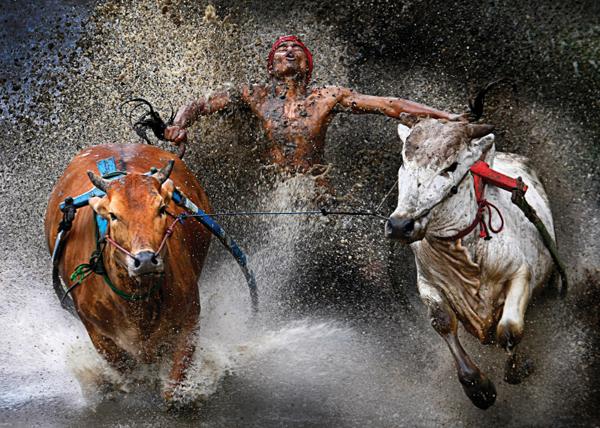 15 лучших работ World Press Photo 2013: выбор Сергея Максимишина - №9