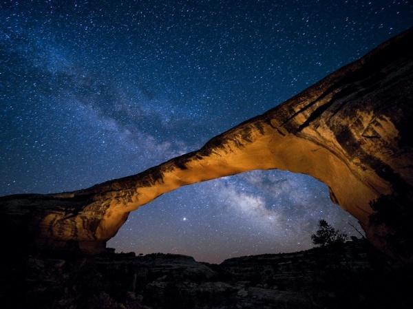National Geographic: лучшие фото издательства за последние годы - №5