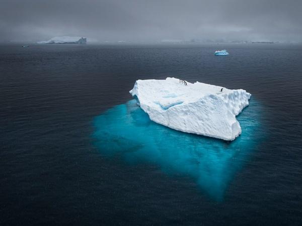 National Geographic: лучшие фото издательства за последние годы - №17