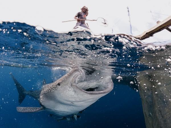 National Geographic: лучшие фото издательства за последние годы - №36