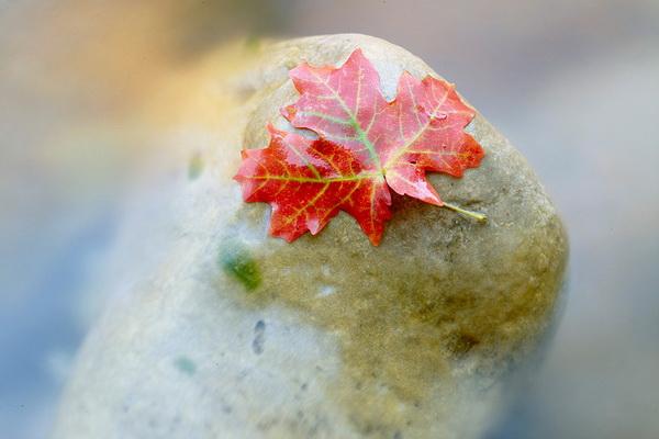 8 ценных советов о фото пейзаже от Дэвида Уорда с примерами - №1