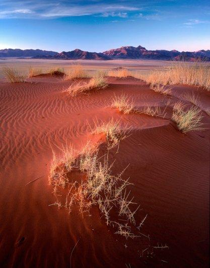 8 ценных советов о фото пейзаже от Дэвида Уорда с примерами - №6