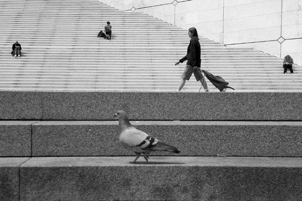 33 лучших примера черно-белых уличных фото - №14