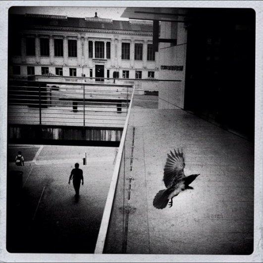 33 лучших примера черно-белых уличных фото - №23