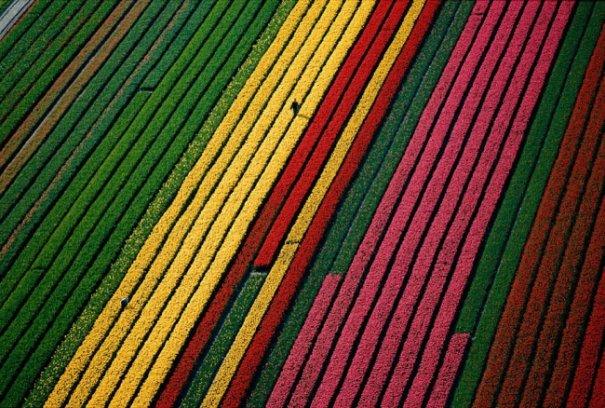 Самые выдающиеся кадры Земли с воздуха на выставке во Франции - №2