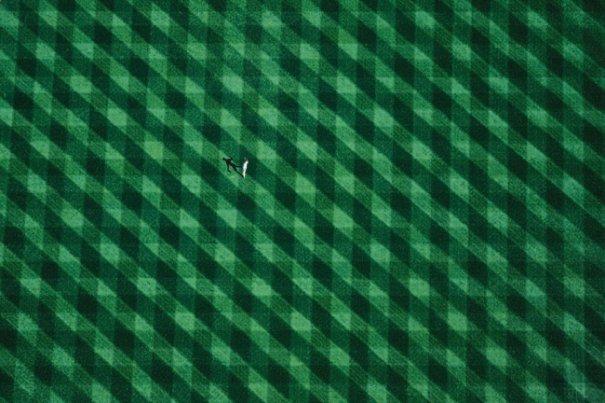 Самые выдающиеся кадры Земли с воздуха на выставке во Франции - №15