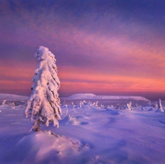 Истинно русские пейзажи - №7