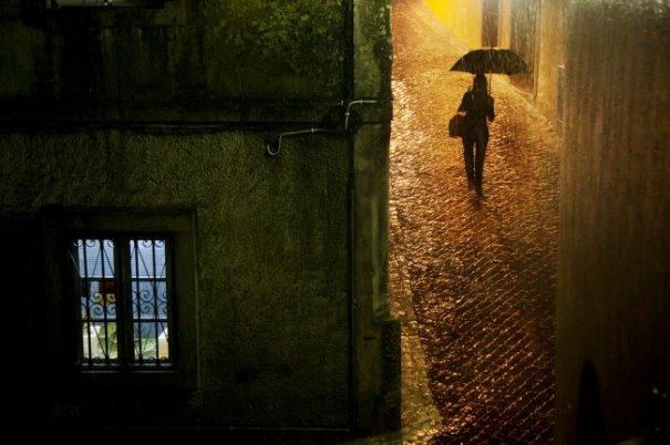 Дождливая погода не проблема для хорошей фотографии - №2