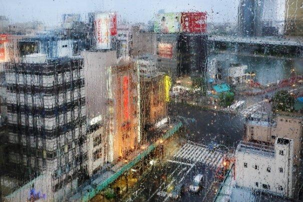 Дождливая погода не проблема для хорошей фотографии - №6