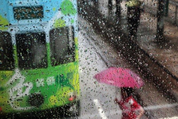 Дождливая погода не проблема для хорошей фотографии - №10