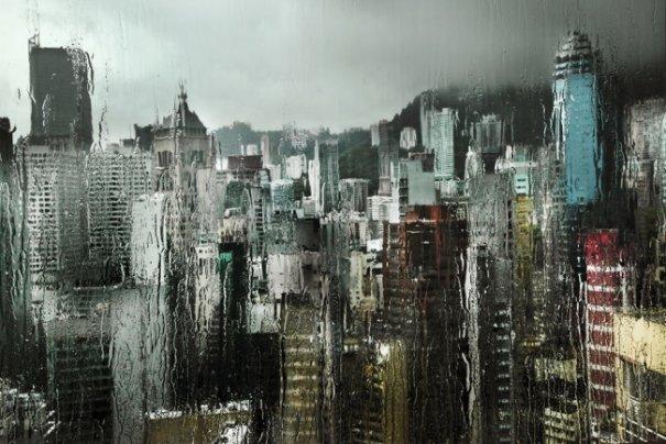 Дождливая погода не проблема для хорошей фотографии - №15