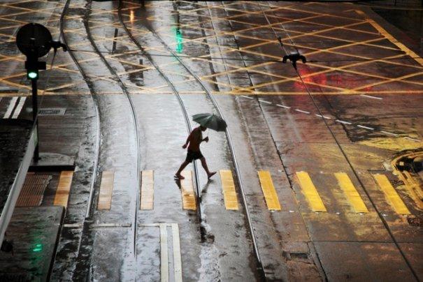 Дождливая погода не проблема для хорошей фотографии - №16