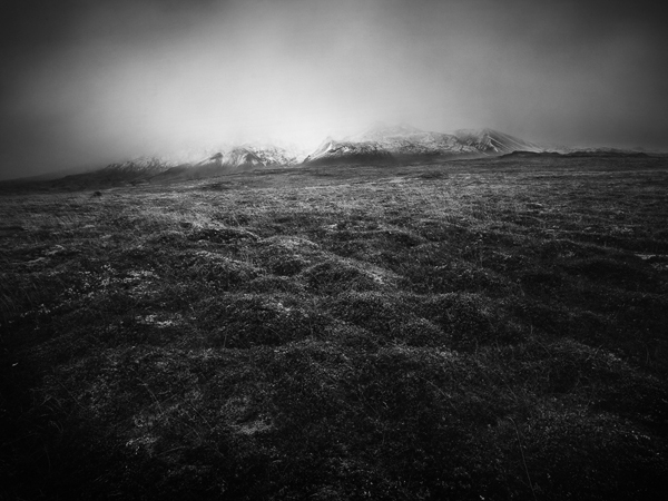 Спокойные художественные фото пейзажи Питера Зеглиса - №16