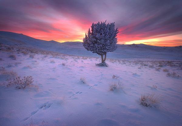 Фото пейзаж как результат глубокой страсти к Земле. Марк Адамус - №12