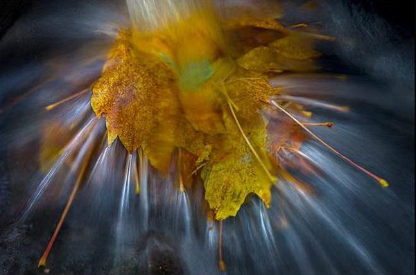 Фото пейзаж как результат глубокой страсти к Земле. Марк Адамус - №18