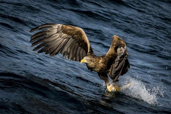 Закончилось время подачи фотографий на конкурс National Geographic Traveler 2013. Примеры работ - №9