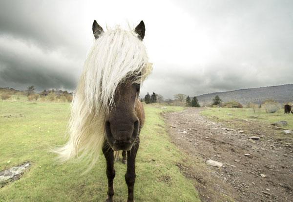 Закончилось время подачи фотографий на конкурс National Geographic Traveler 2013. Примеры работ - №17